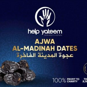 AJWA Aliyah Dates From Madinah (500g)