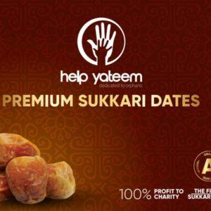 Premium Quality Sukari Dates (500g)